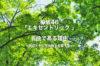 欅坂46「エキセントリック」が名曲である理由~歌詞とその世界観を考察する~